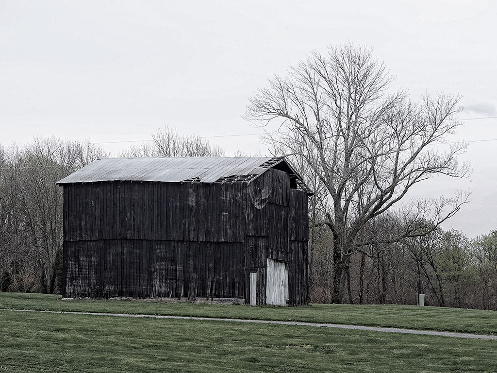 Old-Barn-Photos-Dawn-Backwater-Stills