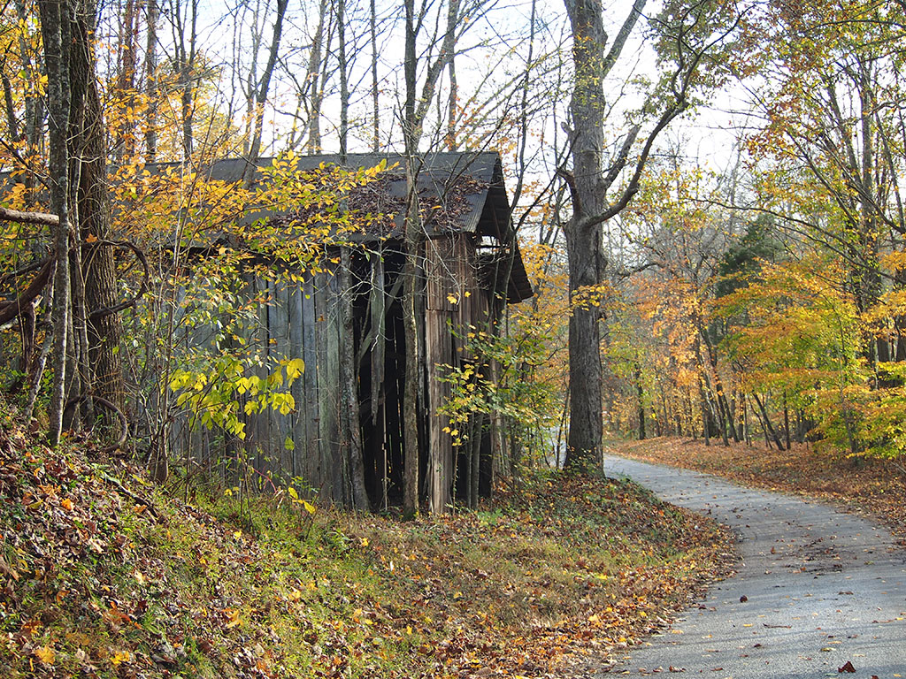 Simple-Farmhouse-Decor-Leaves-of-Gold-Backwater-Stills