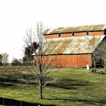 Wall art featuring red gabled barn behind black farm fencing
